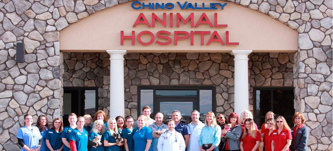 Chino Valley Animal Hospital