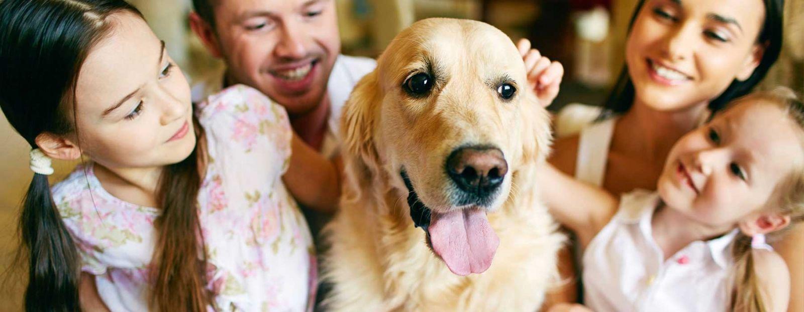 Country Veterinary Clinic - Veterinarian in Live Oak