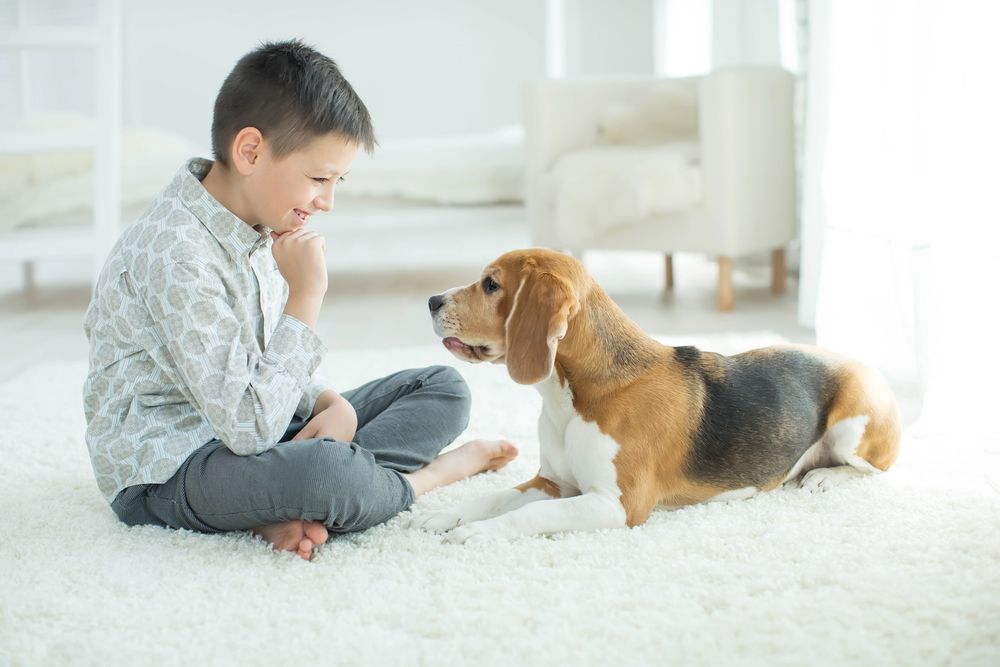 pet and kid