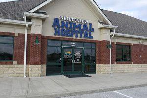 Bridgeview Animal Hospital