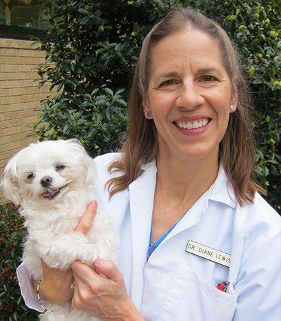 Dr. Diane T. Lewis