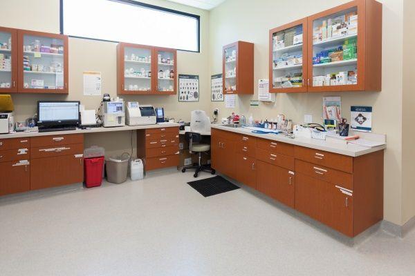 Laboratory Section