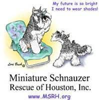 Miniature Schnauzer Rescue of Houston Logo